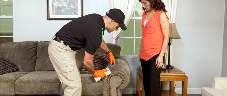 West Valley City, UT carpet upholstery cleaning
